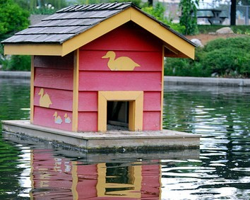 Claiming expenses in a company becky naylor for Movable duck house