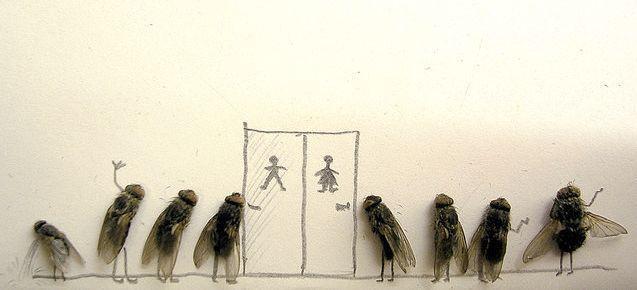 fly queue