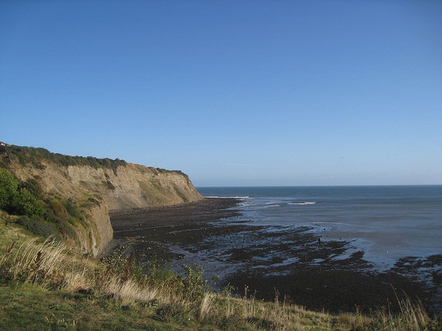 ness point