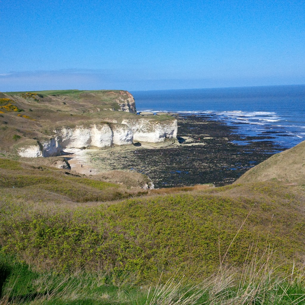 flamborough shore