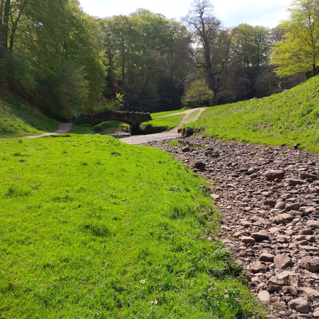 dry river skell studley